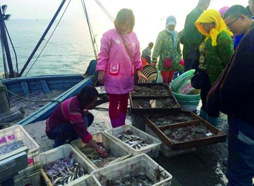 莱州梭子蟹产量少价格高,本地人想买正宗的也要找关系 -中国水产商